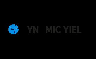 Logo Dynamic Yield