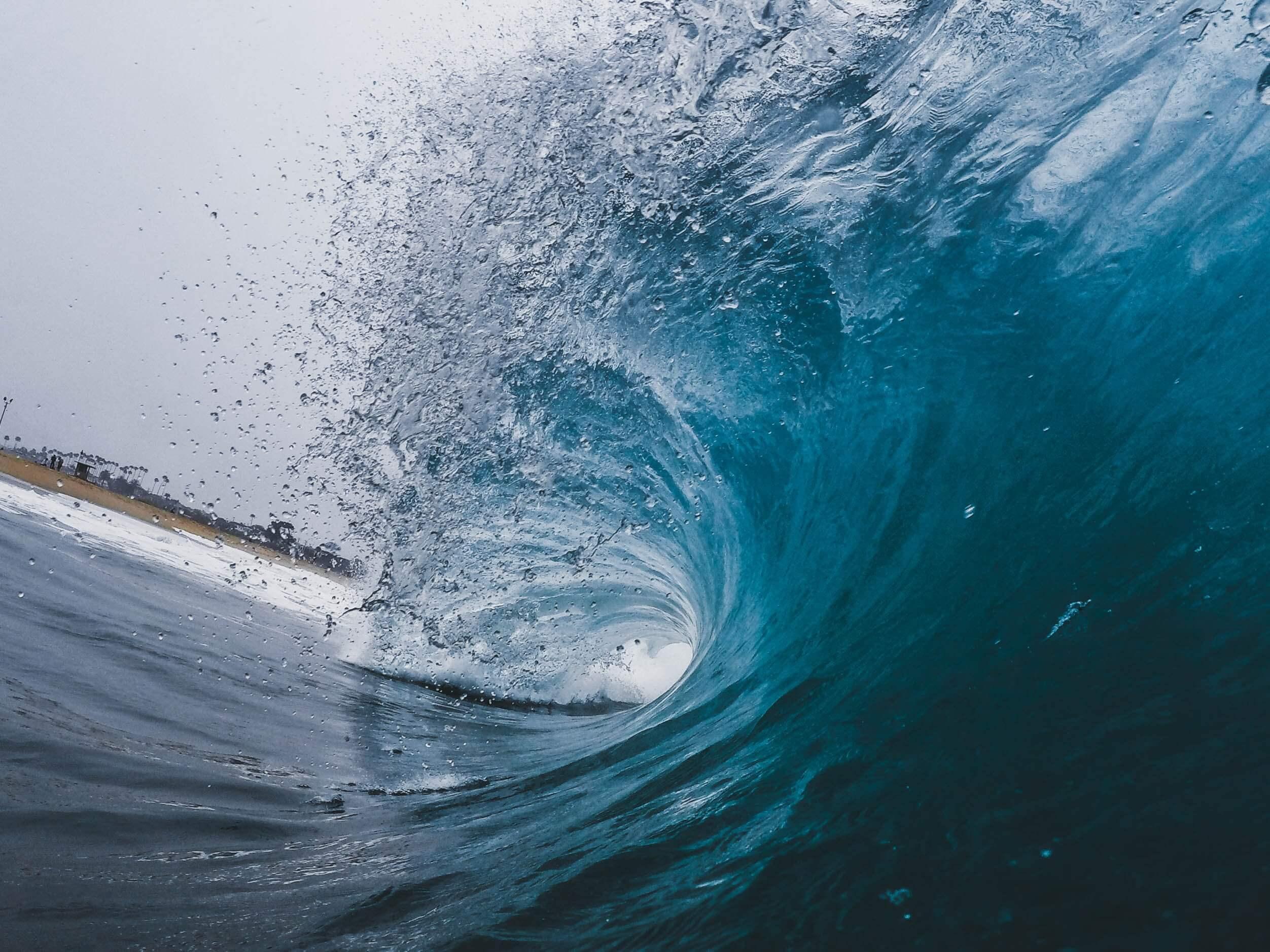 Wave-Forrester-Trending-Image